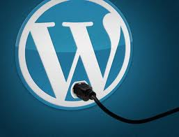 Eight Must-Have WordPress Plugins